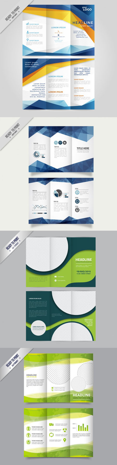 Colored Trifold Brochure in Vector