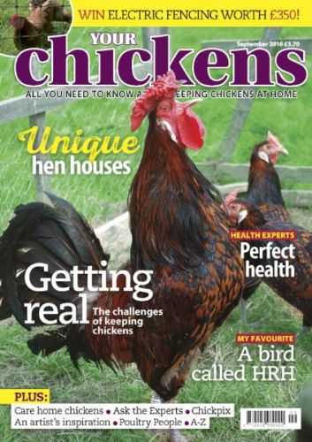 Your Chickens - September 2016