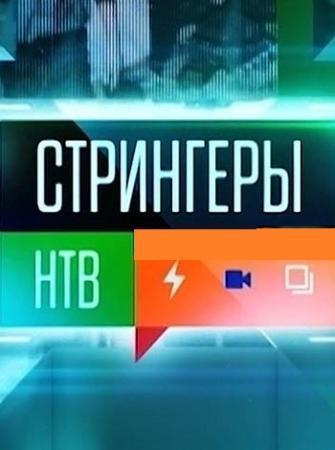 Стрингеры НТВ (Эфир от 12.11.2016) (ТК НТВ) / [2016, ТВ-Шоу, SATRip]