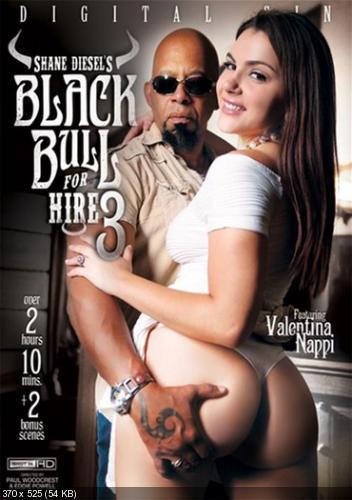 Shane Diesels Black Bull Hire