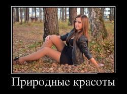 Подборка лучших демотиваторов №268