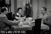 Хлеб, любовь и фантазия / Pane, amore e fantasia (1953)