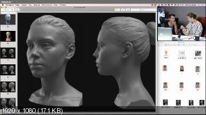 Анатомия лица. Мейкап и ретушь [profileschool]
