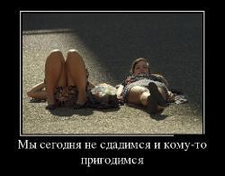 Подборка лучших демотиваторов №271
