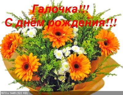 http://i84.fastpic.ru/thumb/2016/1105/67/315872eb09d63aadf1a5fb89cec14c67.jpeg