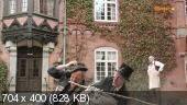 Чудесное путешествие Нильса с дикими гусями (4 серии) (2011)