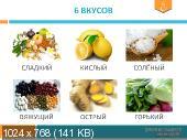 Левицкие - Все курсы школы здорового питания