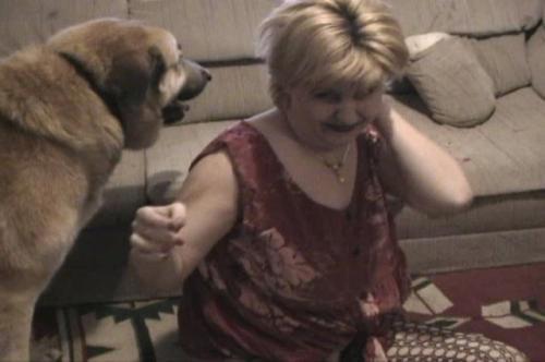 Caledonian Wild Dino Animal Porn Zoo Videos Dog Porn Free
