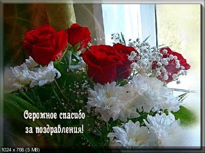 Поздравляем с Днем Рождения Елену (Елена Лисичка) _26d50f0e58b6015851bdeebf08b705a9