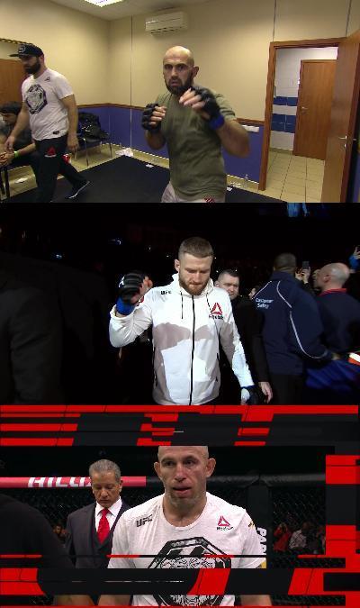 UFC Fight Night 136 1080p HDTV x264 -heavendl